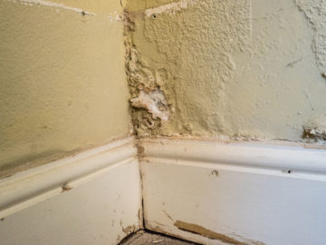 Fix Rising Damp & Proofing